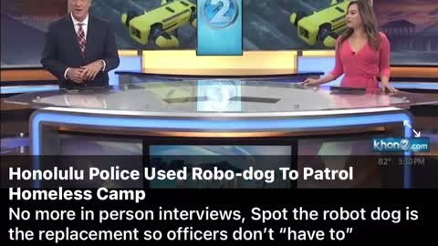 Robot Dog to patrol Homeless Camps. You are being REPLACED! What now happens to the humans?