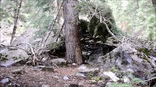 Sasquatch Hunting Blind