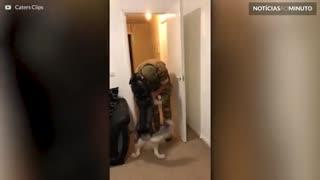 Emocionante! Soldado retorna da Nigéria e reecontra seu cão