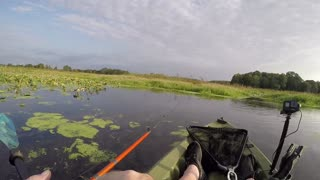 Battle with snakehead...