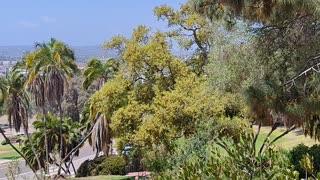 La Vista desde Presidio Park