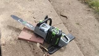 Tree stump removal #2