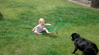 Baby plays with dog