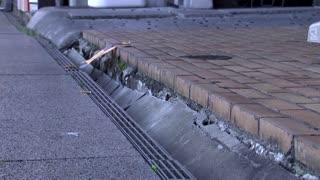 Dozens injured as Japan suffers strong quake