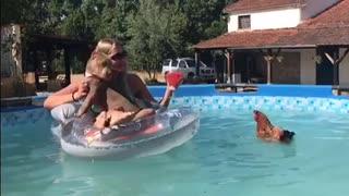 Swimming Chicken Photobombs Shoot