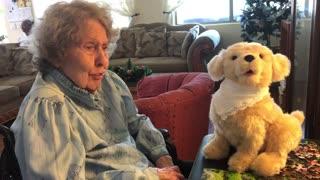 Grandma gets new Joy For All Christmas Puppy