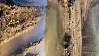 Beaver dam water crossing