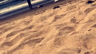 Guy narrates two guys in wetsuits warming up on beach before surfing