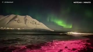 Surfista pega onda sob aurora boreal na Islândia