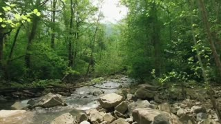 Nature Video with Soothing Music
