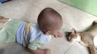 Cute Baby Playing with A Cat