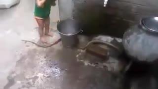 Cute Kid - Daring Boy - Playing With Snake