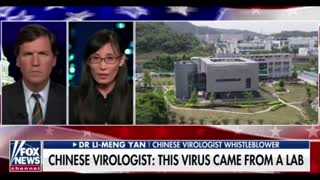 Carlson Interview with Li-Meng Yan