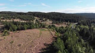 Drone Footage Over Kielder Forest