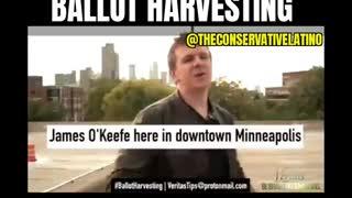 James Okeefe exposes Ballot Harvesting