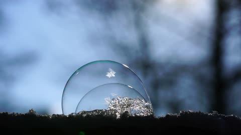 # Tvol bubbla frys
