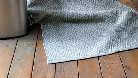 Adorable little puppy hides under a rug