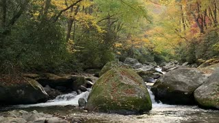 Peaceful stream 2