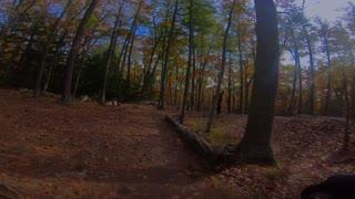 South Mountain Trail Fun - Pawtuckaway State Park, New Hamphsire