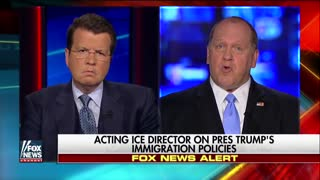 Look what former acting director of ICE calls sanctuary cities