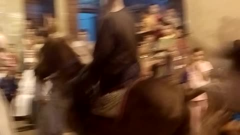 Horse dance2