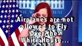 Plane Flies Over White House? Doesn't add up.....