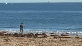 Man one wheel skateboard on beach