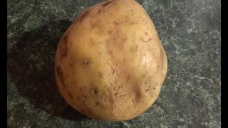 Potato Song