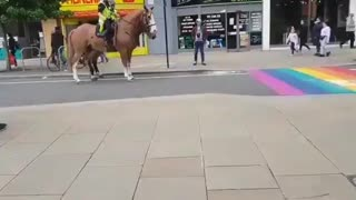 Police horses don't like LGBTQ colors.