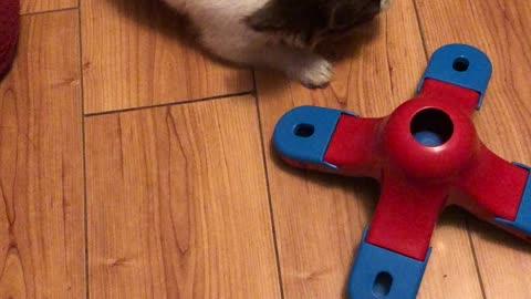 Puzzle toys