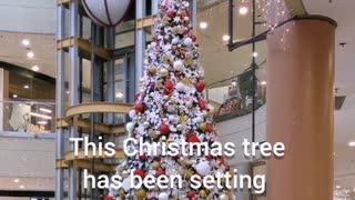 LONGEST CHRISTMAS