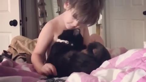 4-year-old boy loves his kitty cat
