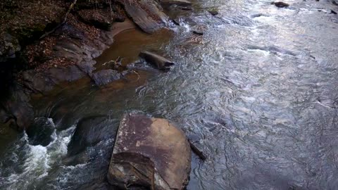 Back country creek