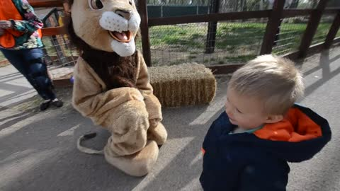 """Toddler shows """"lion"""" who's the boss"""