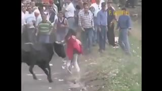 Don't mess with bulls