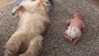 Dog Copies Baby Best Friend