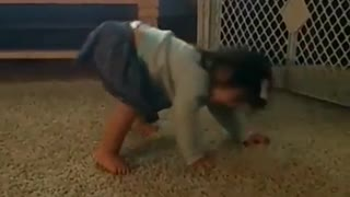 Spinning baby adorable falls over