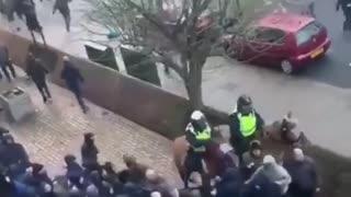 Tuča navijača Milwalla i Evertona