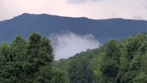 Tennessee Morning