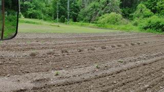 Farm Update - 015