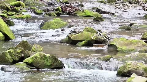 torrent brook water nature tourism