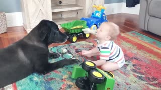 Baby Plays Doll with Dog