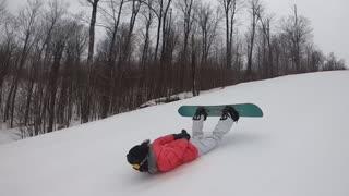 Penguin slopes ride