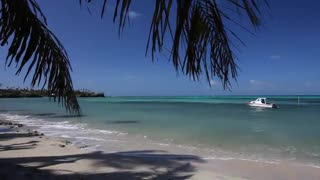 Relaxing Music Therapy Video Piano Music Natural Scenes