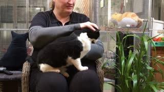 Catterlodge - So Much Love!