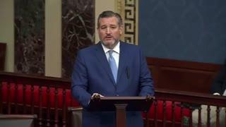 Senator Ted Cruz DARES AOC and Lying Libs to Actually Visit the Border