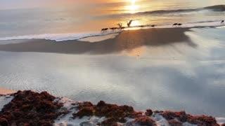 Melbourne Beach Morning