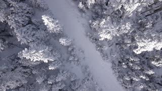 snow white view drone
