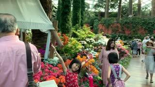 Singapore famous garden part 2