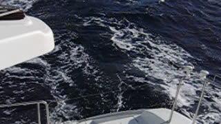Atlantic Crossing Catamaran Sailing